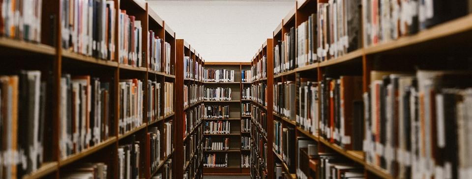 El nuevo paradigma del conocimiento